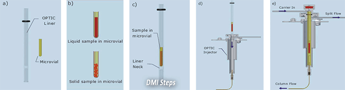 DMI sample introduction for gas chromatography